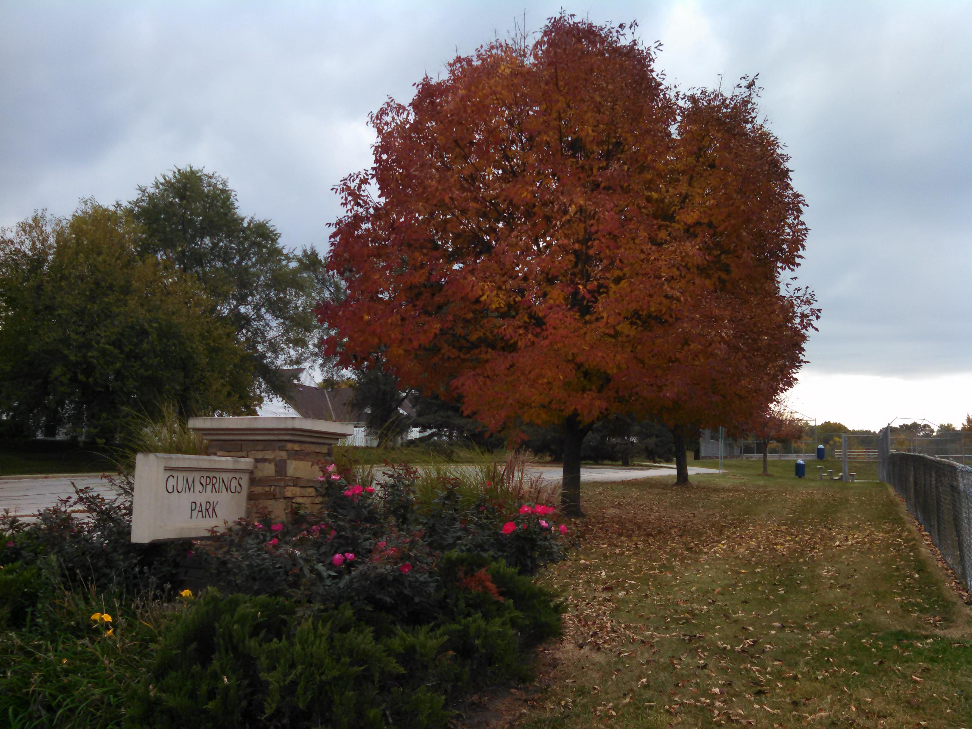 Gum Springs Park | Get Outdoors Kansas